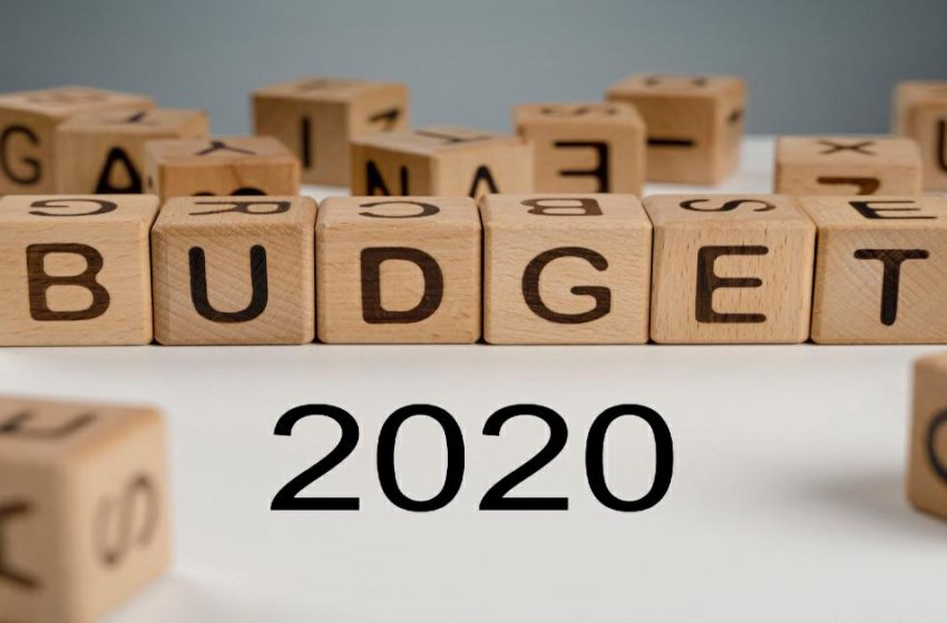 Budget in a nutshell (2020)